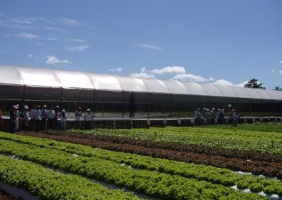 Dia de Campo – DF – 2012