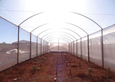 filme-agricola-para-estufa-2
