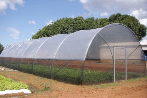 Cage Agrícola 6,25x14m