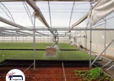 automacao-de-barra-de-irrigacao-estufas-agricolas-4