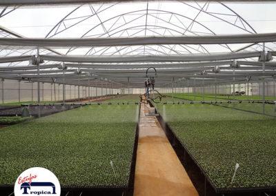 automacao-de-barra-de-irrigacao-estufas-agricolas-6