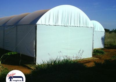 estufa-agricola-para-cultivo-de-cogumelos-1